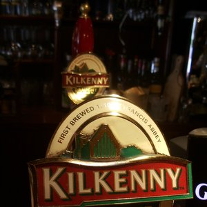 Image for 'The Kilkenny Brothers'