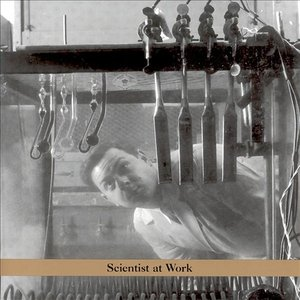 Image for 'Scientist at Work'