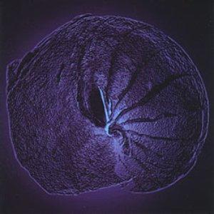 Image for 'Genesis'