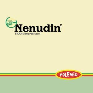 Image for 'Nenudin'