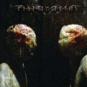 Bild för 'Fist in Fetus EP'