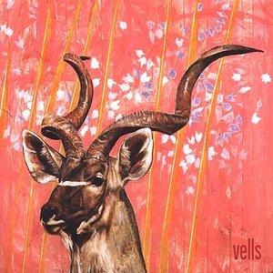 Image for 'Vells'