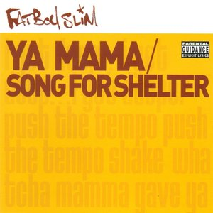 Image for 'Ya Mama & Song for Shelter'