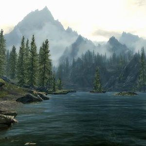 Image for 'The Skyrim Jank from that one Town'