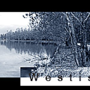 Image for 'Westis'