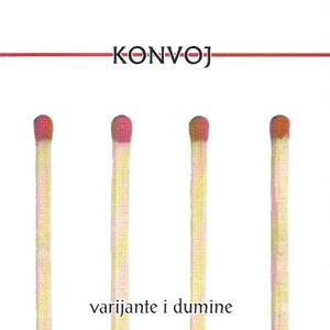 Bild für 'Varijante i Dumine'