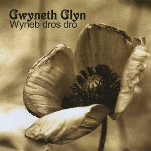 Image for 'Wyneb Dros Dro'