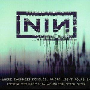 Immagine per 'Nine_Inch_Nails_Feat._Bauhaus'
