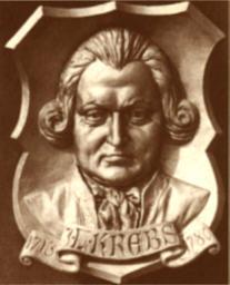 Johann Ludwig Krebs