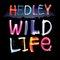 Hedley - WL