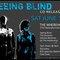 Seeing Blind