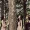 기억의 숲 single [png]