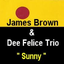 James Brown & Dee Felice Trio YouTube