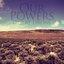 Desert Drone Album Sampler