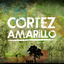 Cortez Amarillo YouTube