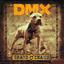DMX - Grand Champ [UK Bonus Track]