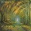 Lady of the Aurian Wood - A Magic Life of Duke
