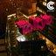 Chill City Vol. 2 - Tokyo
