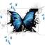 Avatar de Motylek86