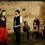 The Counterfeit Gypsies YouTube