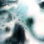 Avatar for Tydall