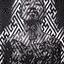 Avatar de Sifuego