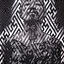 Avatar for Sifuego