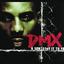 DMX - X Gon Give It To Ya'