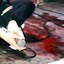 Avatar for bloody_thigh