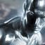 Avatar de Silversurfer73