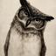 Avatar de battlebird
