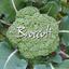 Avatar for Broccoli662