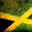 Avatar de Roots-Reggae