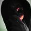 Avatar for UndeadBobo