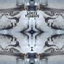 Avatar for Louys_Vibescu