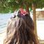 Avatar for Lucinda_Green