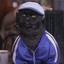 Avatar für chipchik_cat
