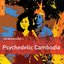 The Rough Guide to Psychedelic Cambodia