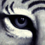 Avatar for Untouchable_15
