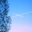 Avatar for s-oblakov