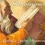 Renaissance: The Mix Collection (disc 1)
