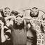 The Ozark Mountain Daredevils YouTube