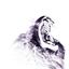Avatar for Panthera-leo