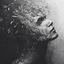 Avatar for fallen_sea