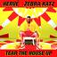 Hervé & Zebra Katz YouTube