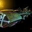 Avatar for albator62