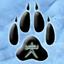 Avatar for Naman