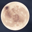 Avatar for spinmedry
