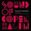 Sound Of Copenhagen Volume 4