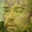 Avatar for zdnck